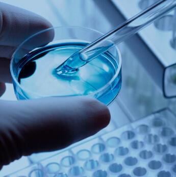 stem cell preparation
