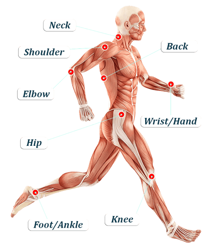 graphic showing body parts affected by chronic pain